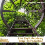 Step 1 Introduction to Live LIGHT Academy