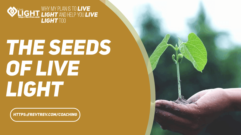 The Seeds of Live LIGHT